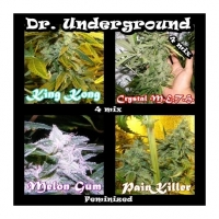 Killer Mix Feminised Cannabis Seeds | Dr Underground