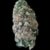 Mr. Fix Feminised Cannabis Seeds