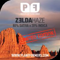 Zelda Haze Feminised Cannabis Seeds | Plantformers
